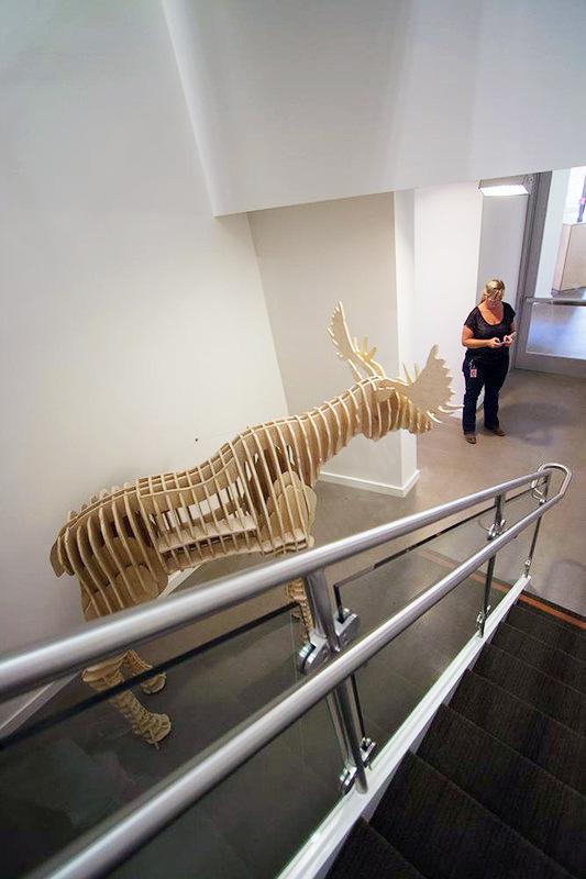 Googleに設置した全長2.5Mのd-torso 木製ヘラジカモデル